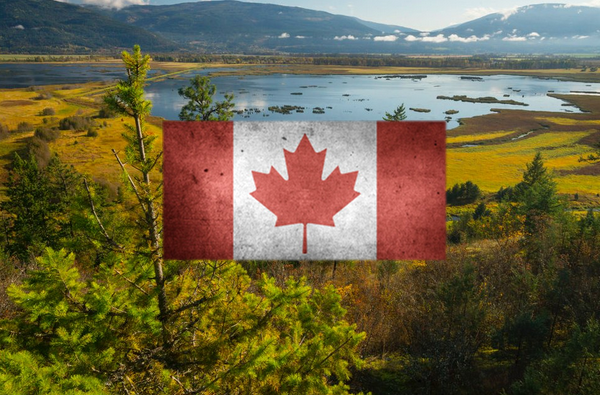 The World Should Pay Canada For All The Carbon Dioxide We Absorb