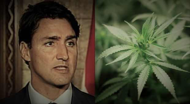 Trudeau Government Ripped For Plan To Tax Medical Marijuana