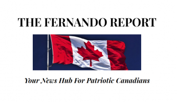 The Fernando Report