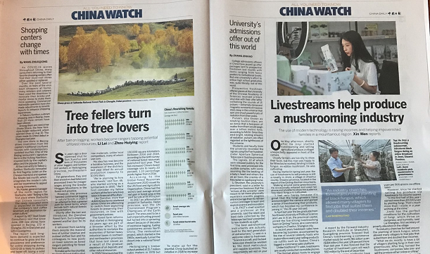 Globe & Mail China Propaganda 1